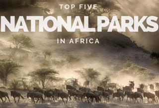 National Park (8) (1) (1)